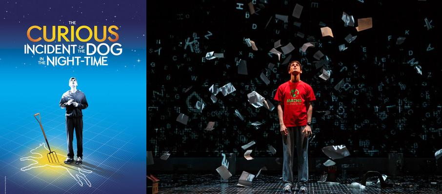 The Curious Incident of the Dog in the Night-Time at Golden Gate Theatre