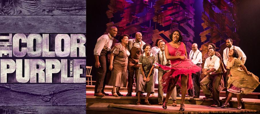 The Color Purple at Orpheum Theatre