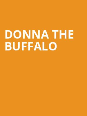 Donna the Buffalo at Great American Music Hall