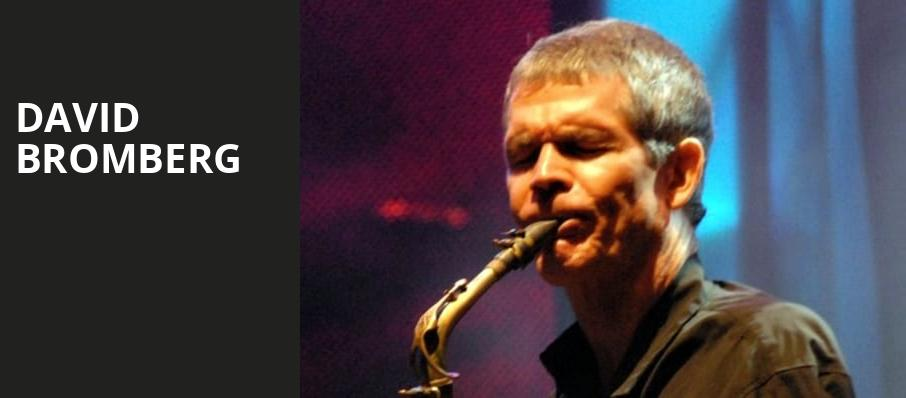 David Bromberg, The Chapel, San Francisco