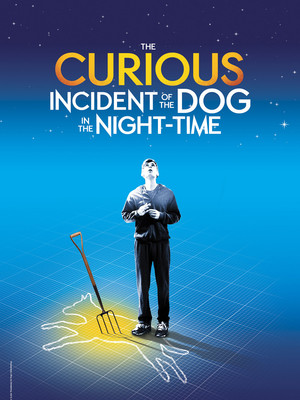 The Curious Incident of the Dog in the Night Time, Golden Gate Theatre, San Francisco